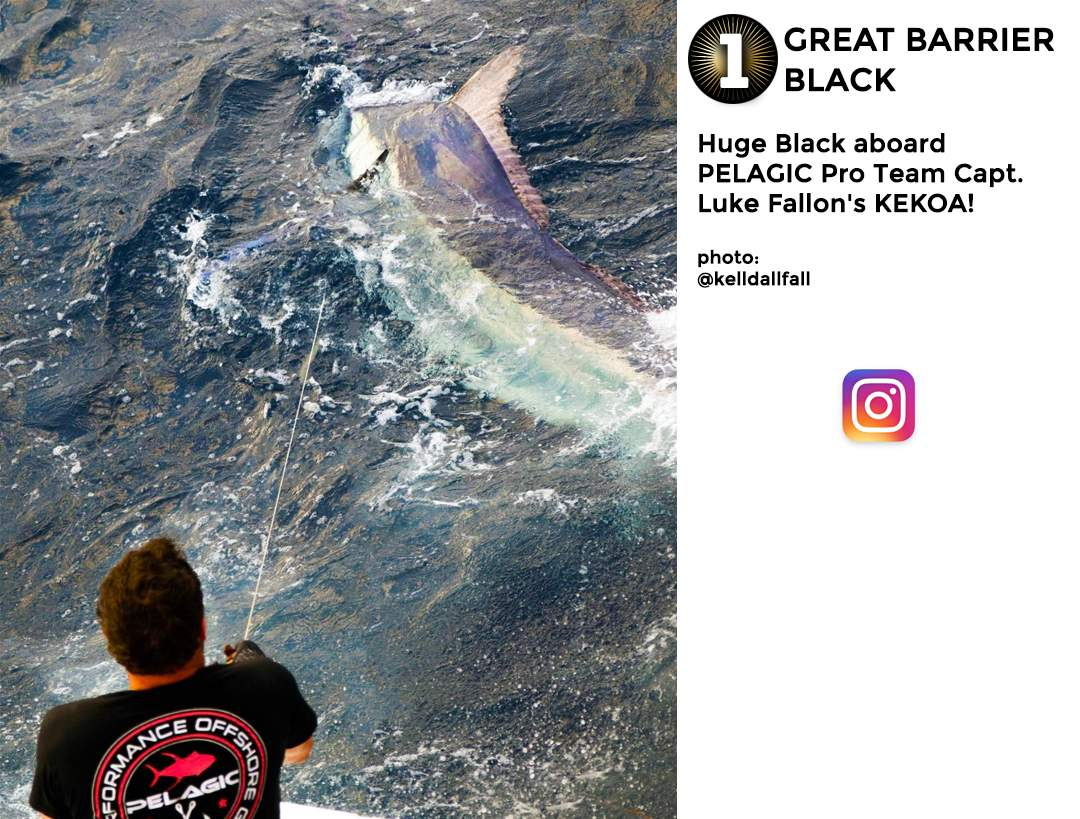 Pelagic Gear Best of March Social Media 1