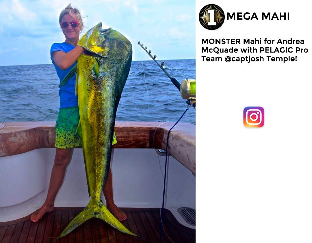 Pelagic Best of August 2017 Fishing Social Media 11