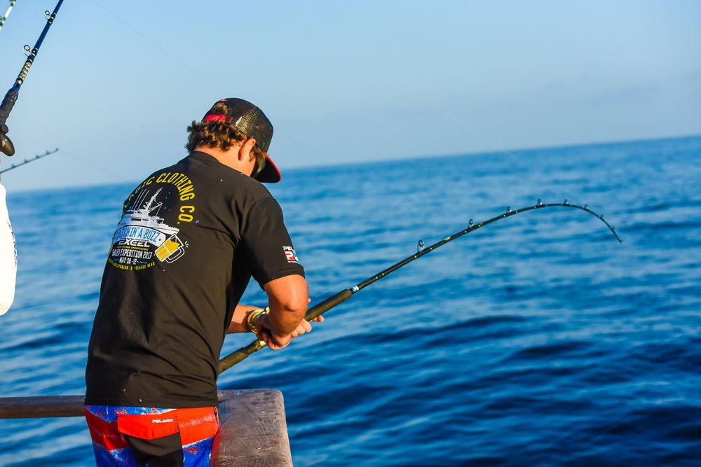 Pelagic Catchin A Buzz Sales Expedition Excel Sportfishing 19