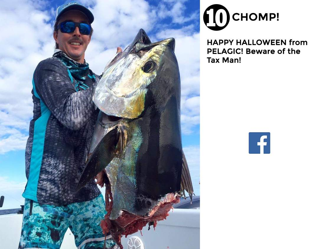 Best of Pelagic Social Media Fishing 10