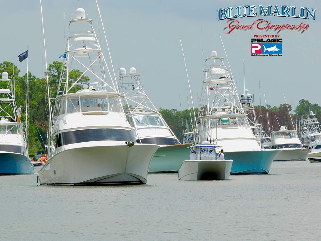 Blue Marlin Grand Championship