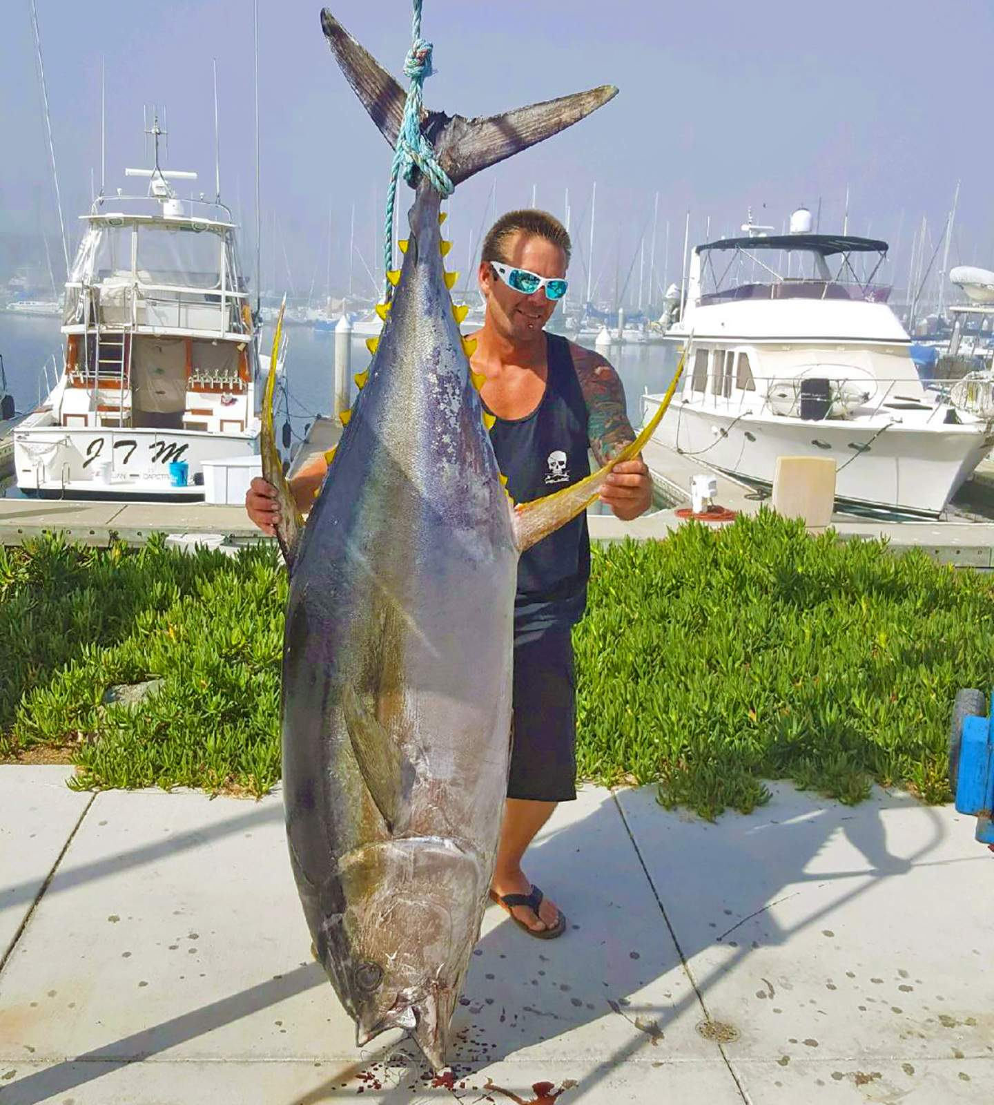 Pelagic New California State Record Yellowfin Tuna 1