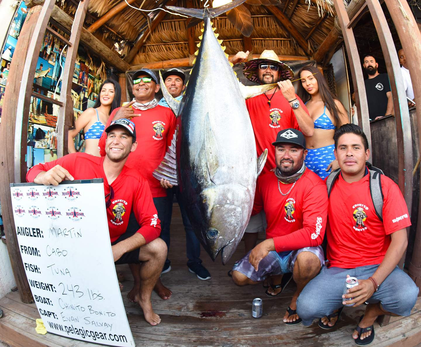 Chinito Bonito 243 tuna Pelagic Rockstar Tuna Tournament