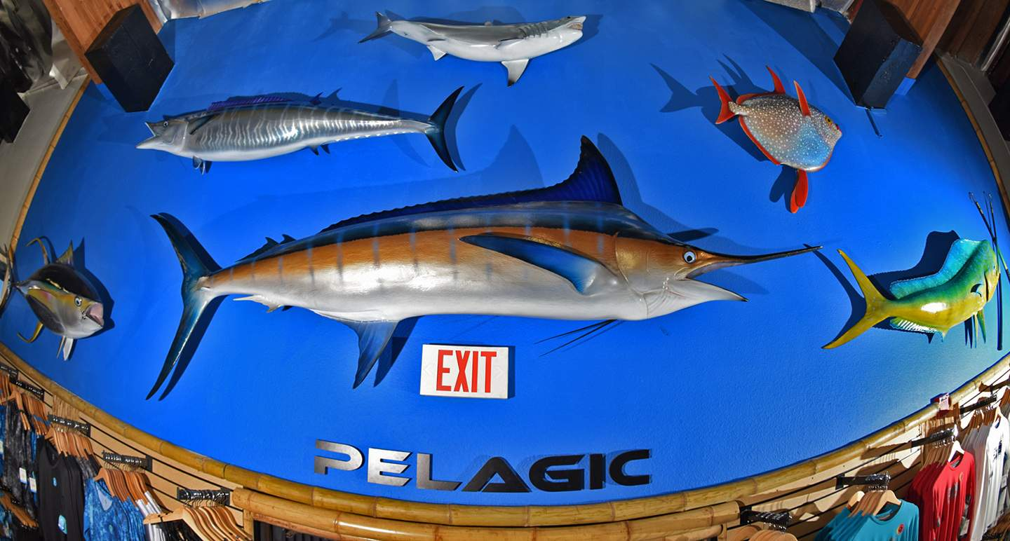 Pelagic California Retail Flagship Store 23