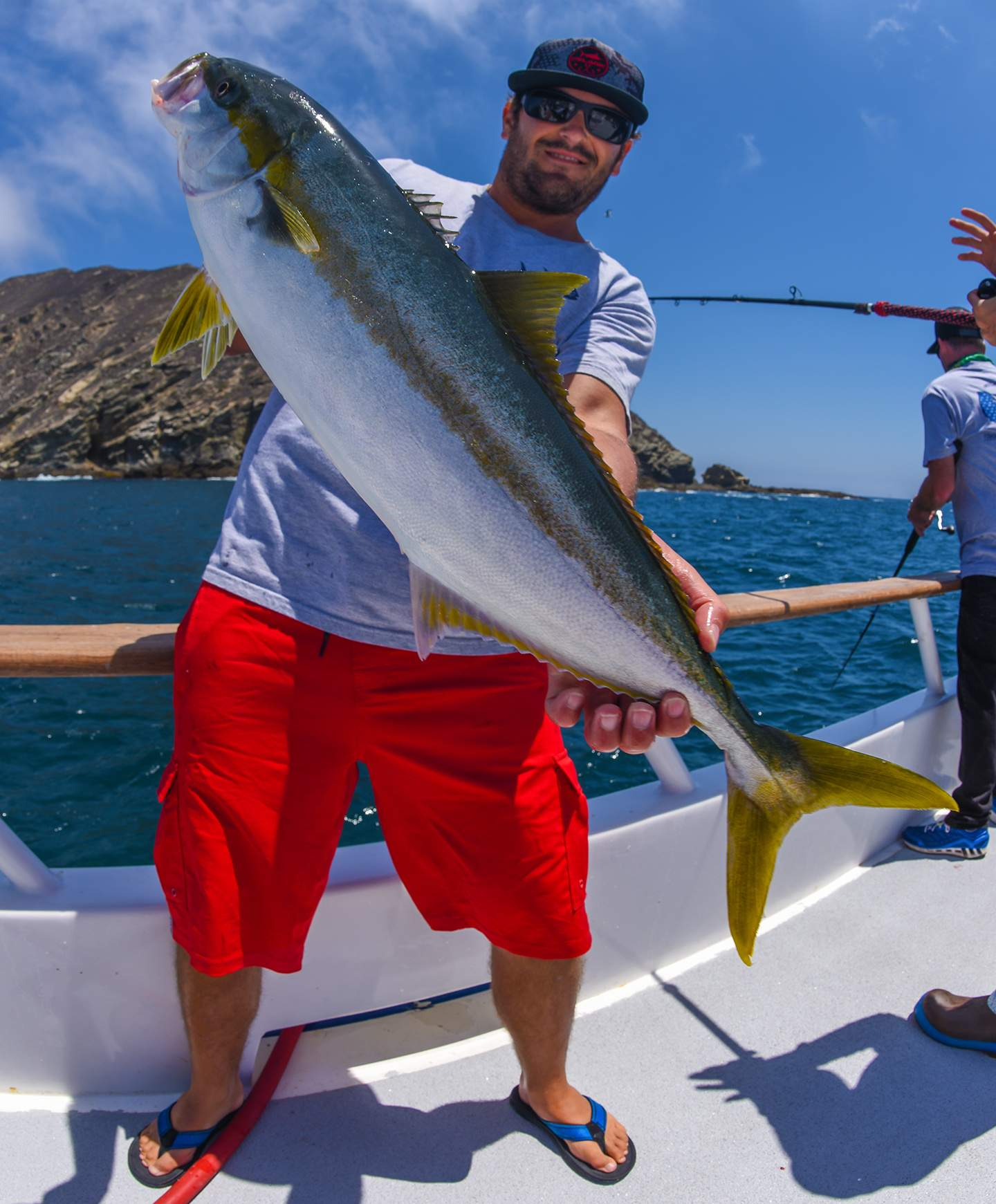 Pelagic Excel Catchin A Buzz Fishing Trip Colin Yellowtail