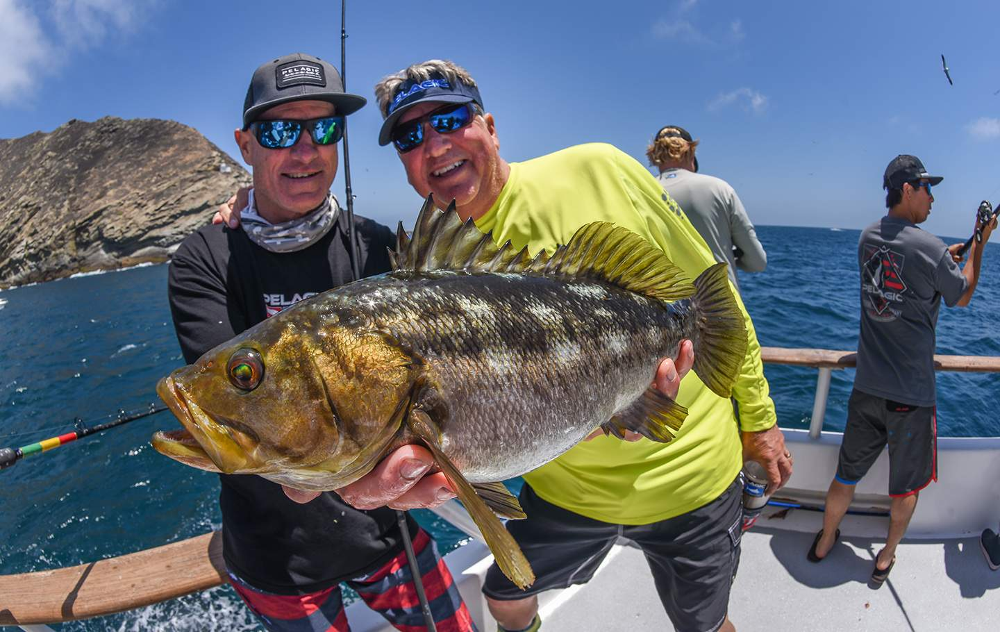 Pelagic Excel Catchin A Buzz Fishing Trip Big Al Mattson Calico