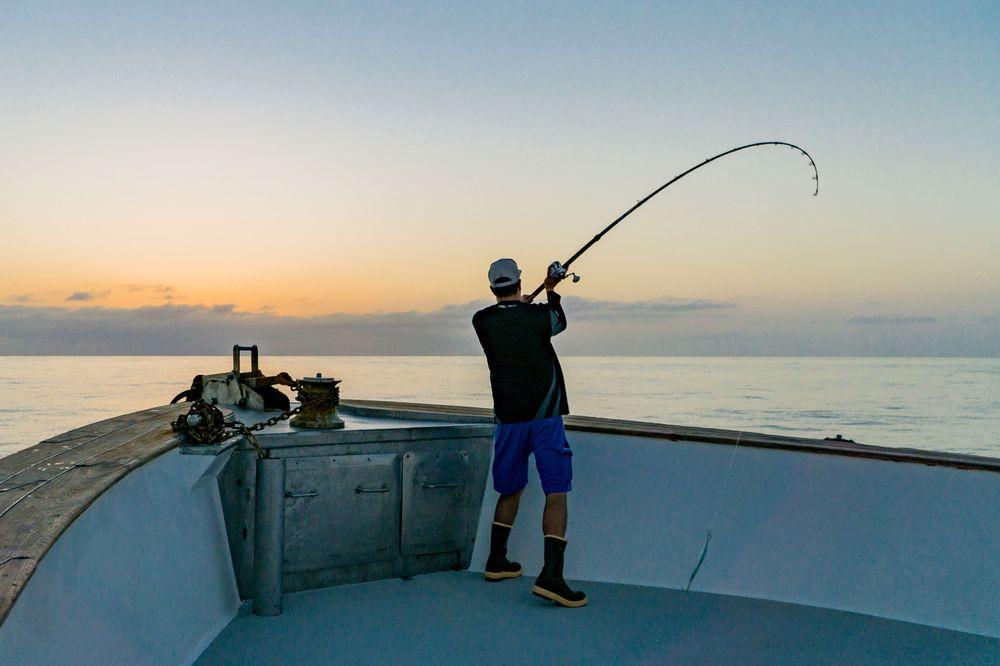 Pelagic Catchin A Buzz Sales Expedition Excel Sportfishing 28