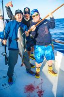 Pelagic Catchin A Buzz Sales Expedition Excel Sportfishing 31