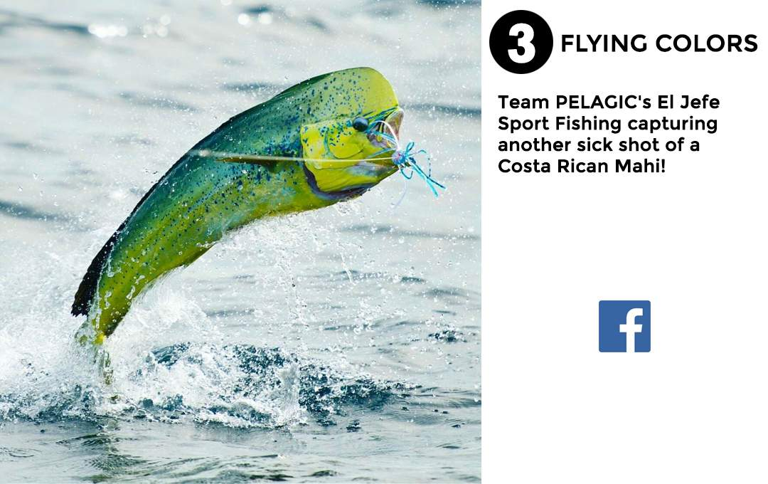 Pelagic Gear Best of March Social Media 3