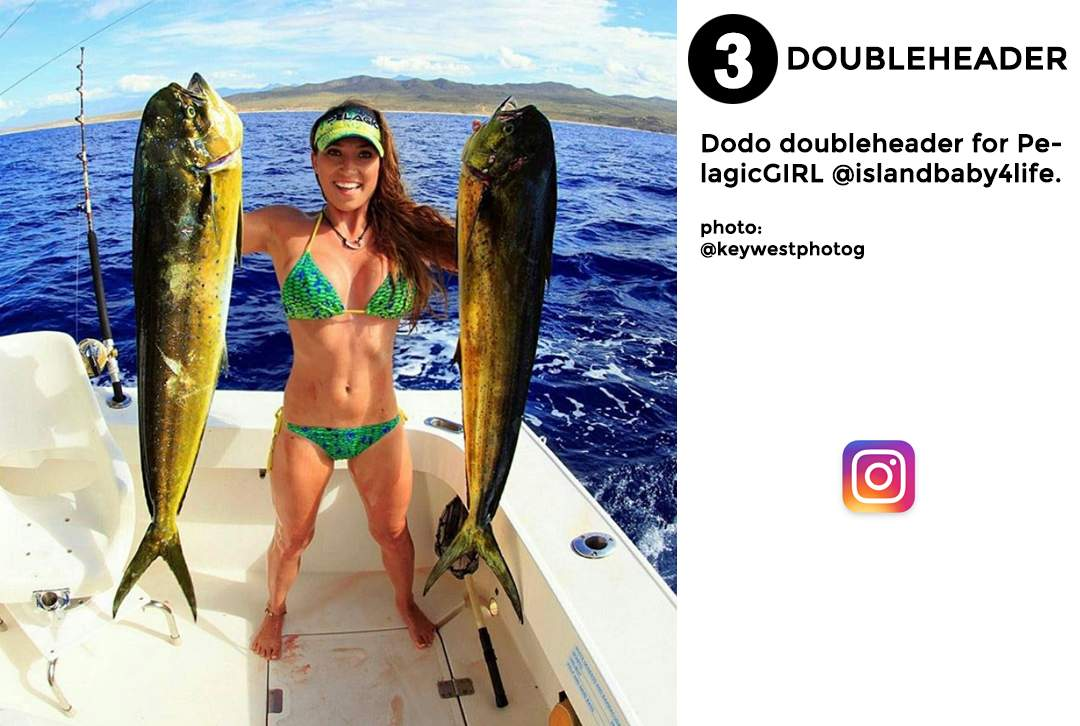 best of november social media pelagic gear 3