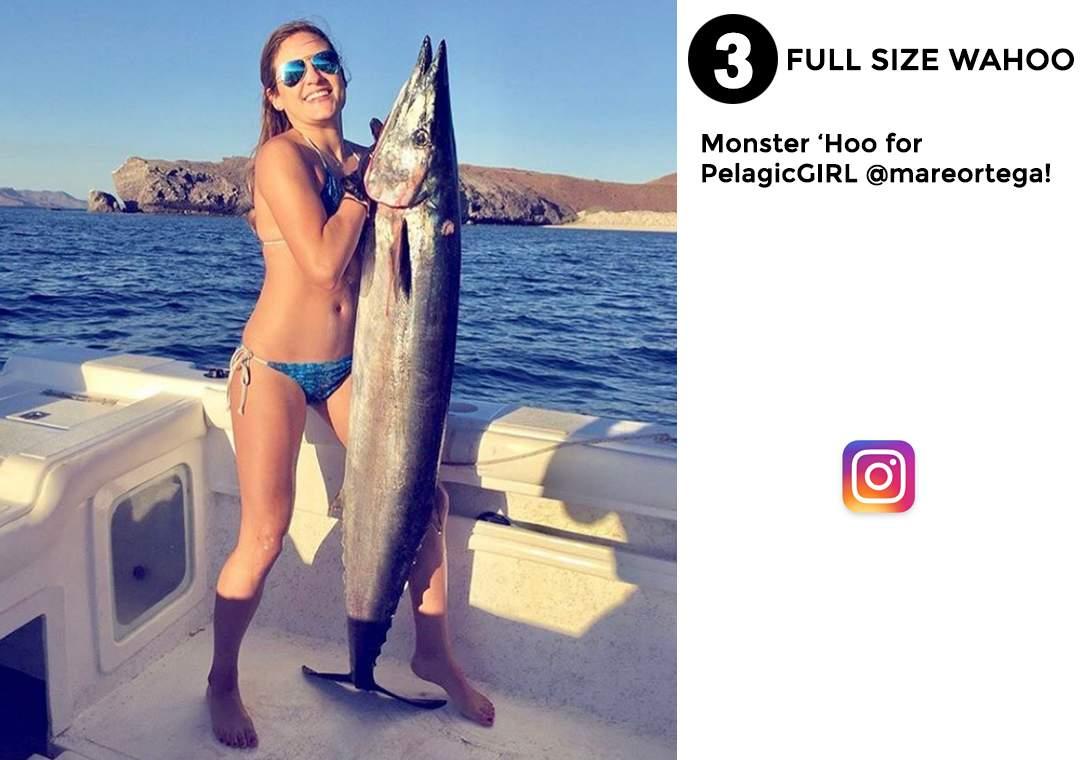 Pelagic Best of December Social Media Fishing 3