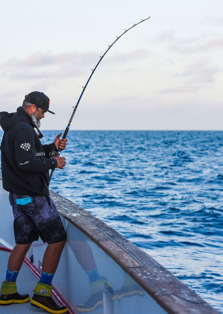 Pelagic Catchin A Buzz Sales Expedition Excel Sportfishing 30