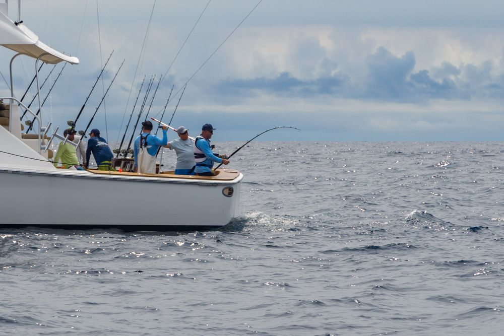 Pelagic Rockstar Offshore Fishing Tournament Costa Rica 70