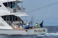 Pelagic Rockstar Offshore Fishing Tournament Costa Rica 71