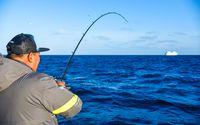 Pelagic Catchin A Buzz Sales Expedition Excel Sportfishing 37