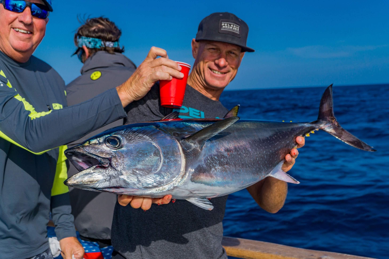 Pelagic Catchin A Buzz Sales Expedition Excel Sportfishing 16