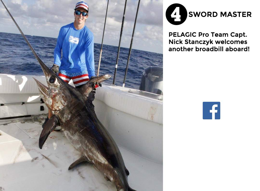 best of Pelagic social media Janurary 2017 #4