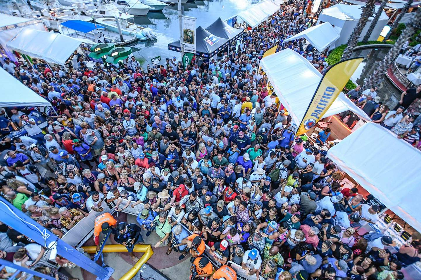 Bisbees Crowd_PELAGIC_2018