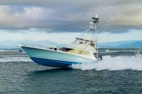 Pelagic Rockstar Offshore Fishing Tournament Costa Rica 44