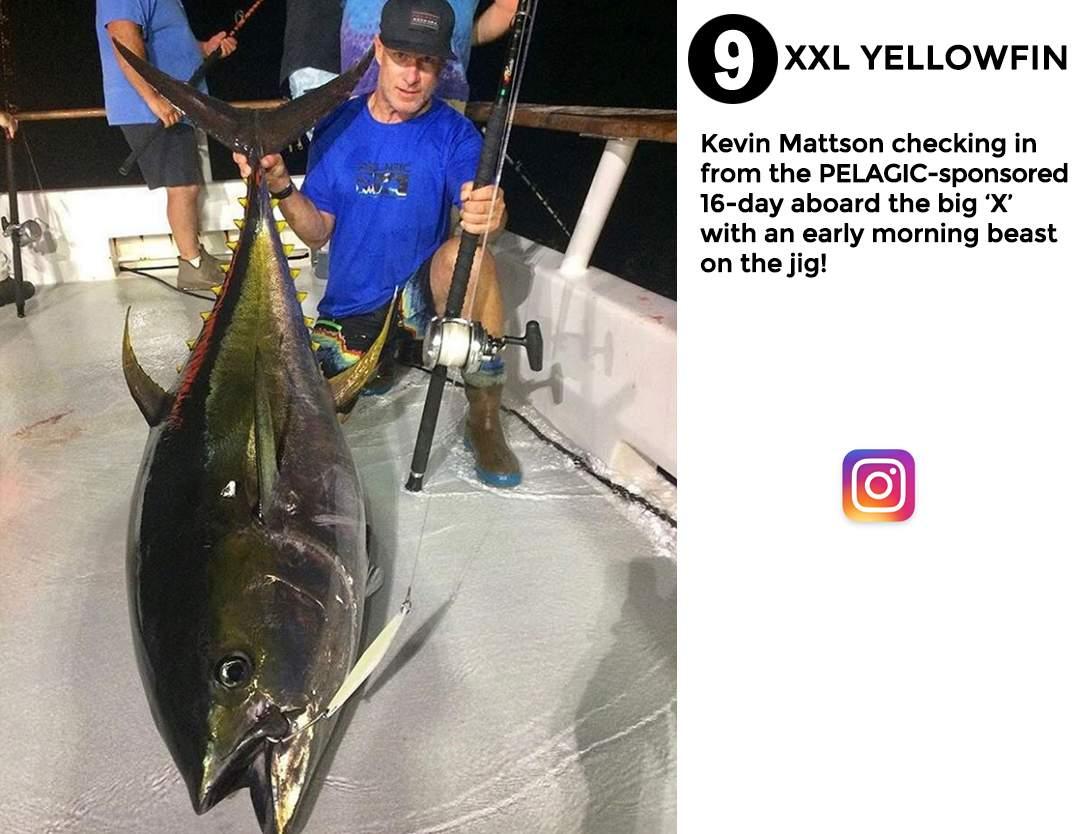 Pelagic Best of December Social Media Fishing 9