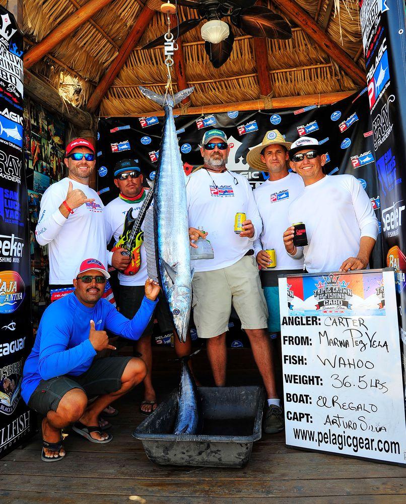 Pelagic Cabo Summer Slam Triple Crown 26