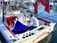 Boats Pelagic Rockstar Tuna Tournament 22