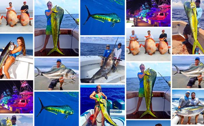 Pelagic Best of August 2017 Fishing Social Media 1