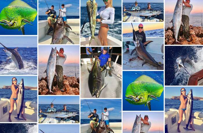 Pelagic Best of December Social Media Fishing 11