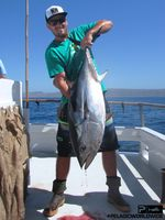 Bluefin Tuna TRIBUTE Pelagic Colin Sarfeh SEPT15