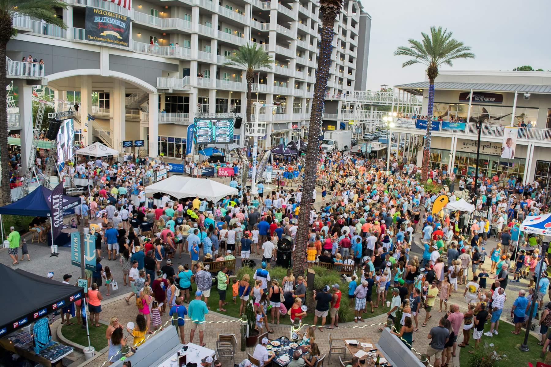 Blue Marlin Crowds
