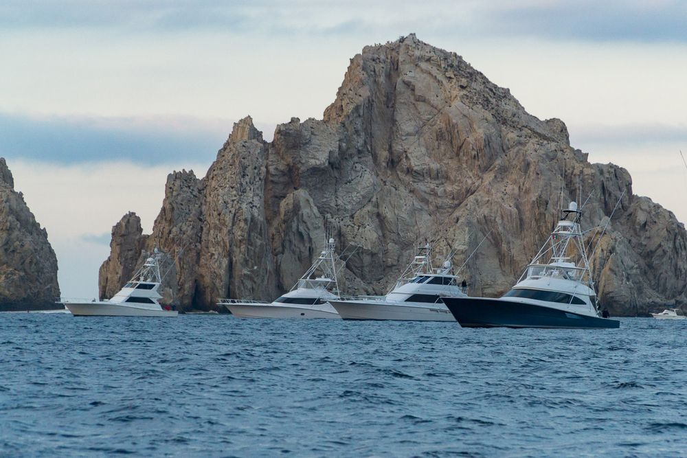 2019 Pelagic Triple Crown Cabo Gallery 16