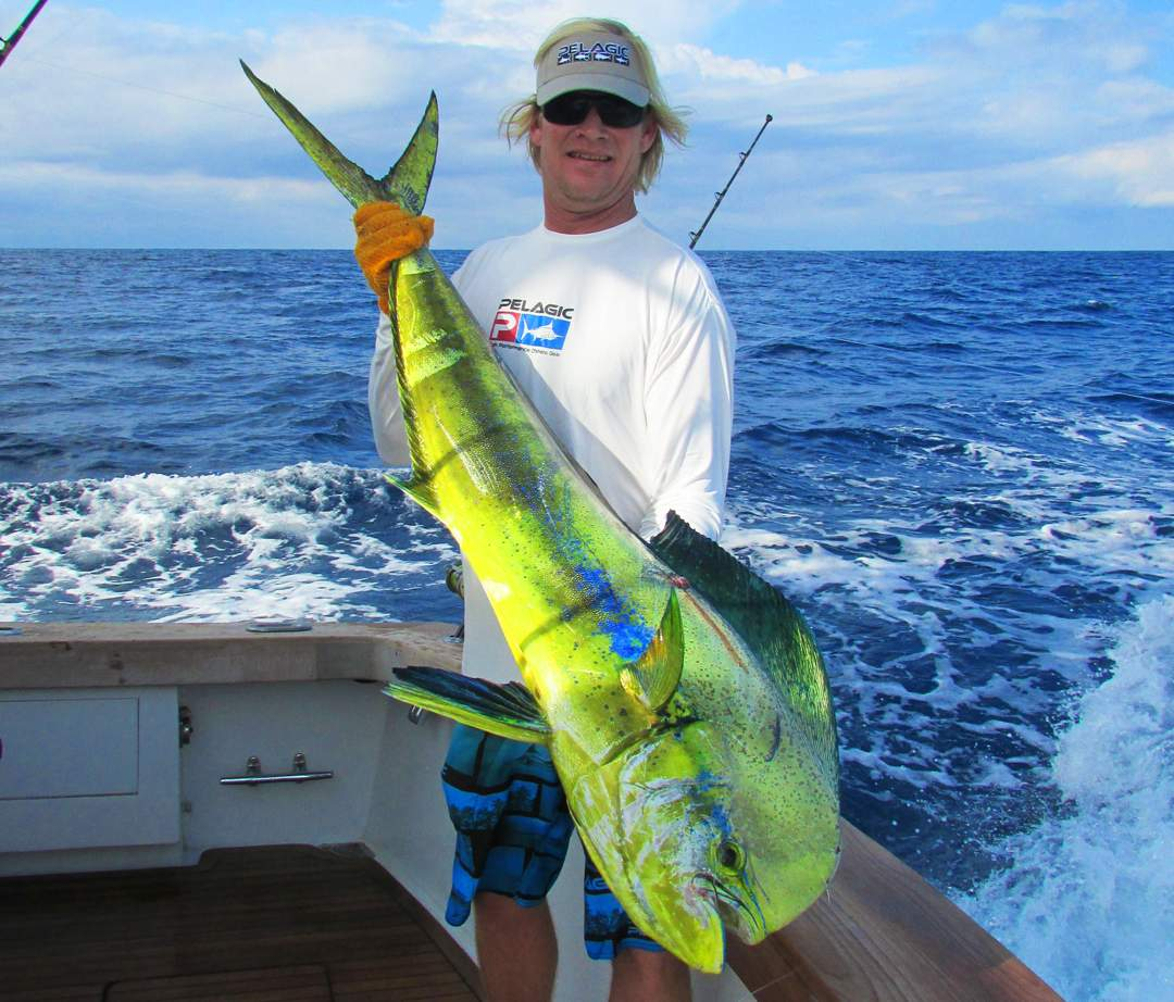 Dorado_PELAGIC Rockstar Offshore Tournament_Costa Rica