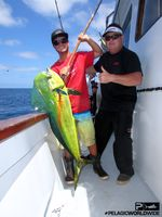 Dorado TRIBUTE Pelagic SEPT15 2