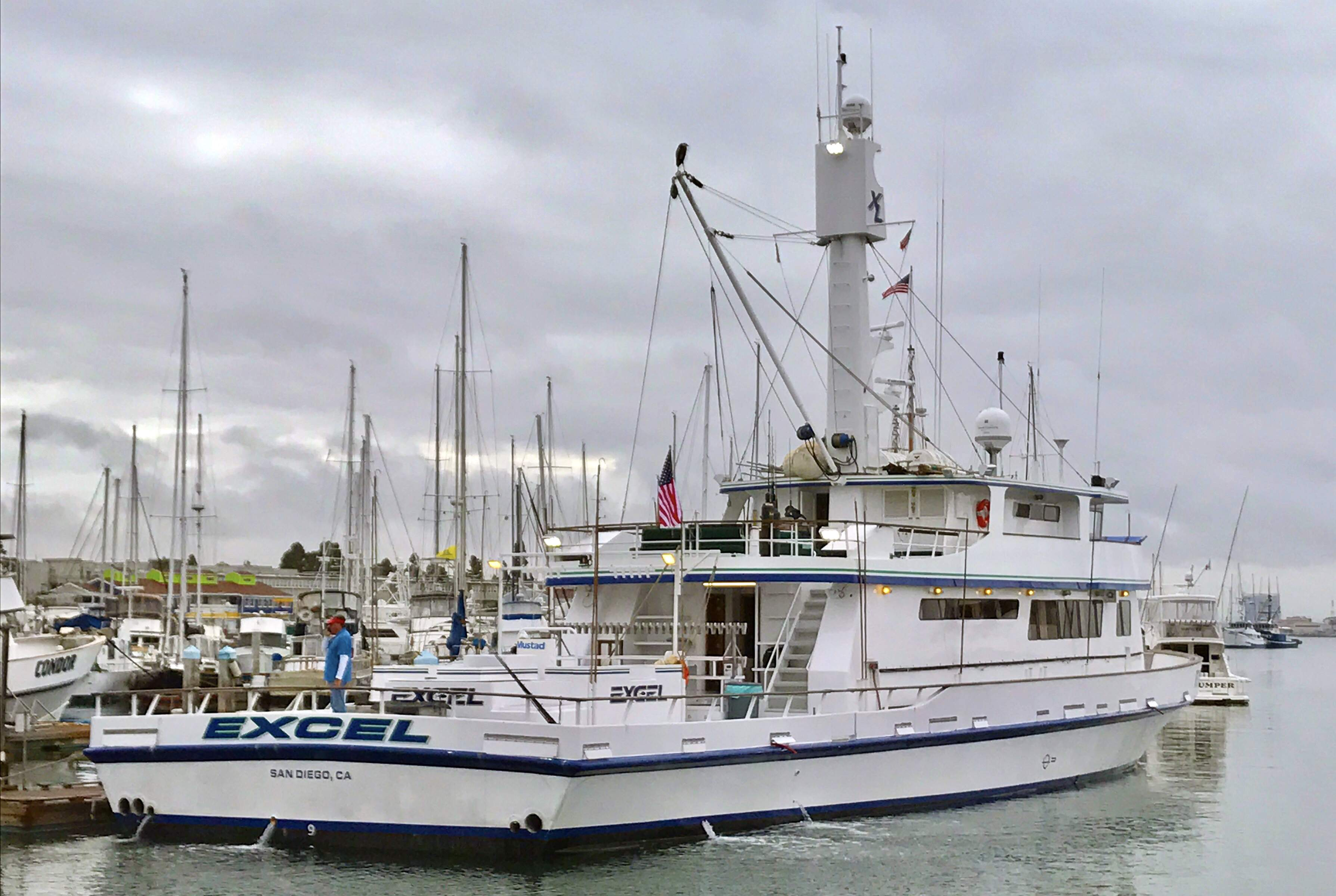 Pelagic Catchin A Buzz Sales Expedition Excel Sportfishing 5