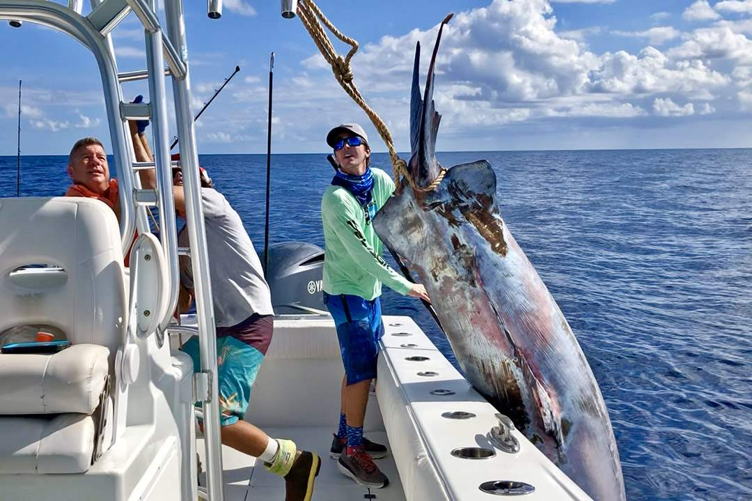 Giant Swordfish 757 pounds_Nick Stanczyk_Pelagic_Bud N Marys