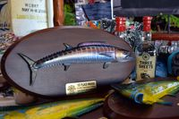 2017 PELAGIC TRIPLE CROWN_Cabo Summer Slam-Gray Taxidermy