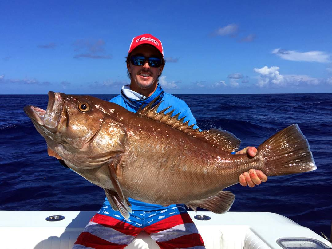 Grouper_PELAGIC_Nick Stanczyk