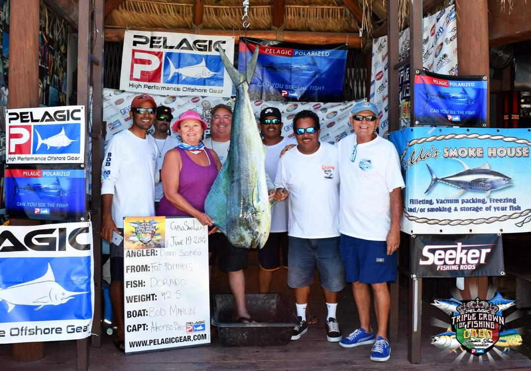 Billfish Release Division