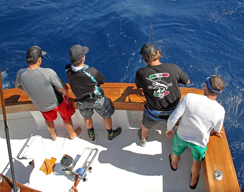 Pelagic Islamorada Swordfish Nick Stanczyk 6