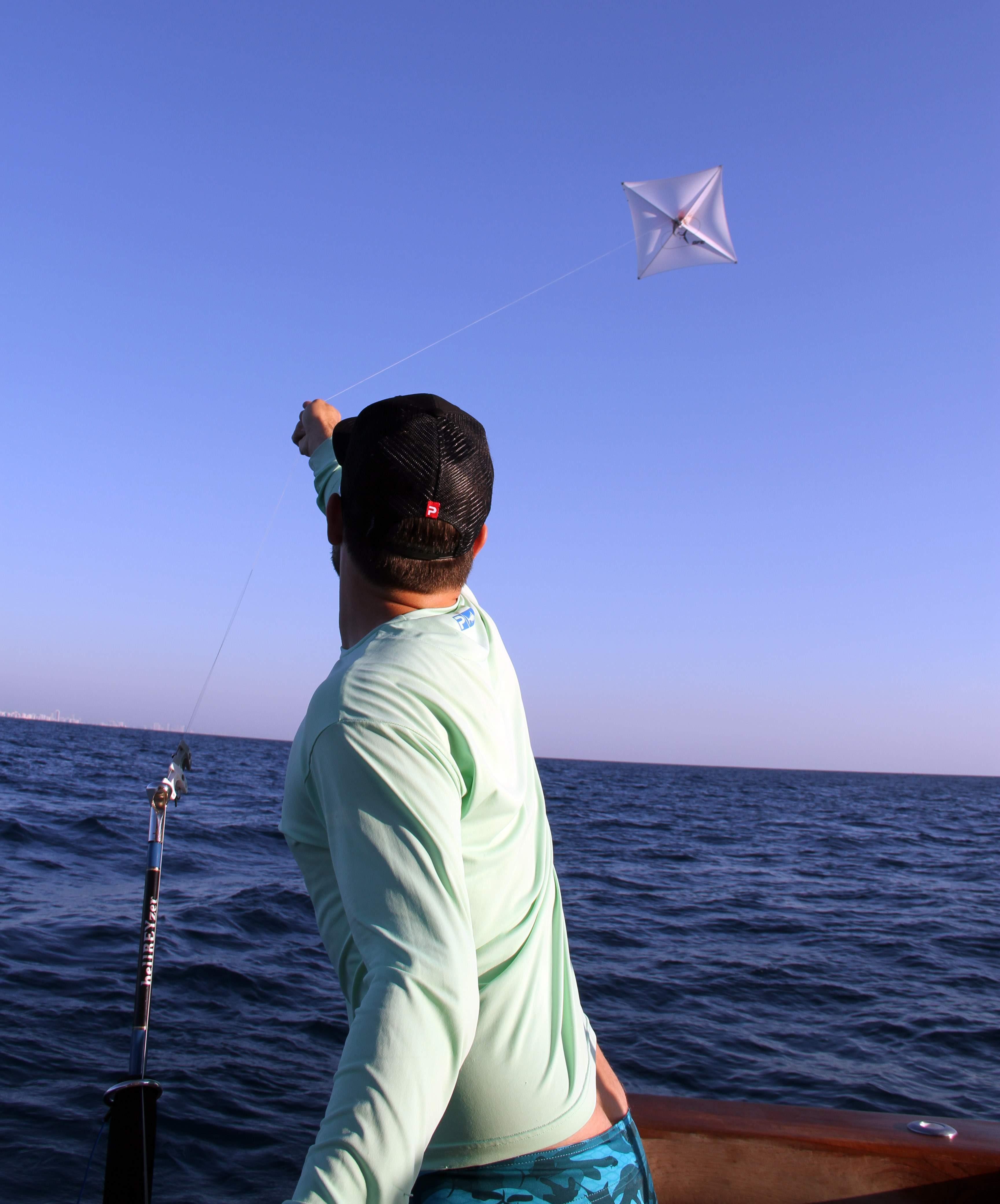 Pelagic Gear Species Profile Sailfish 7