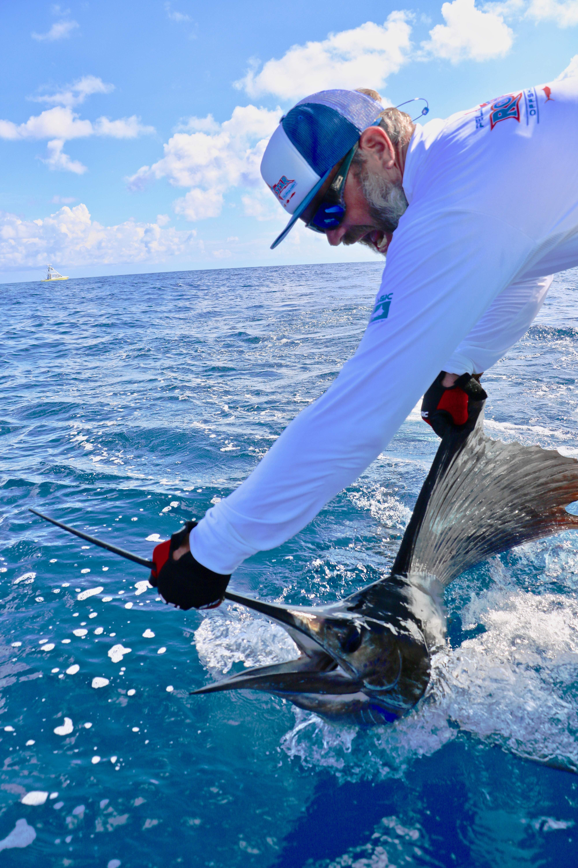 Pelagic Gear Species Profile Sailfish 6