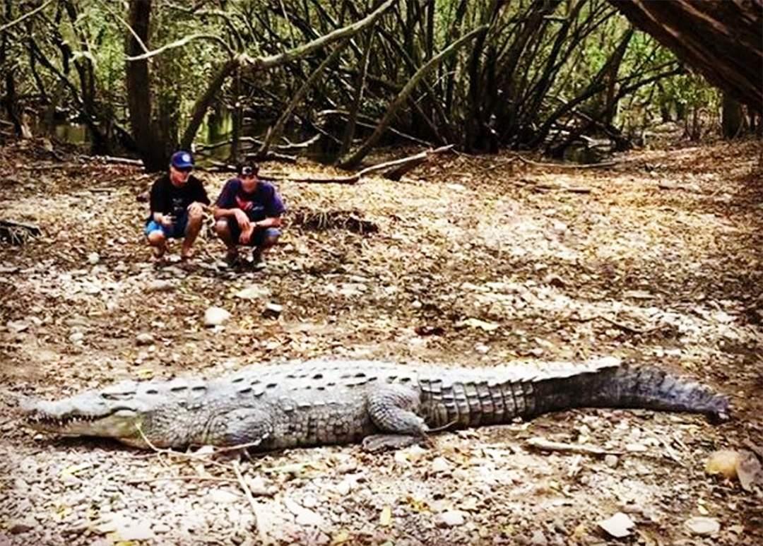 croc shot