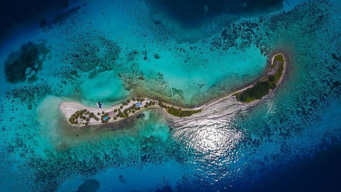 Pelagic Belize Paradise Fishing 11