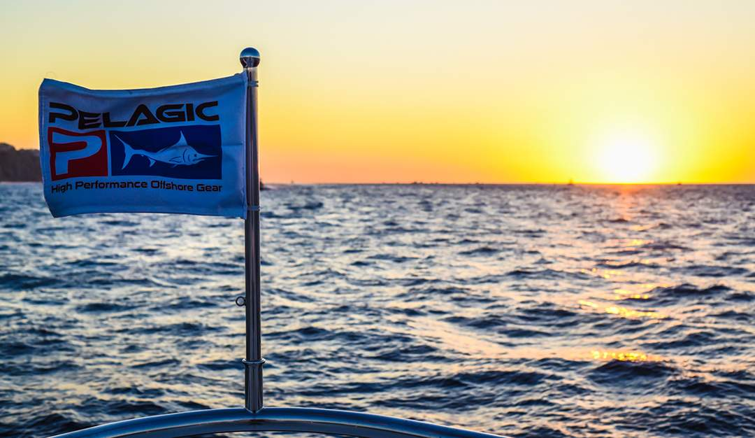 PELAGIC_Sunrise_Sunset_Bisbees_Cabo 2017