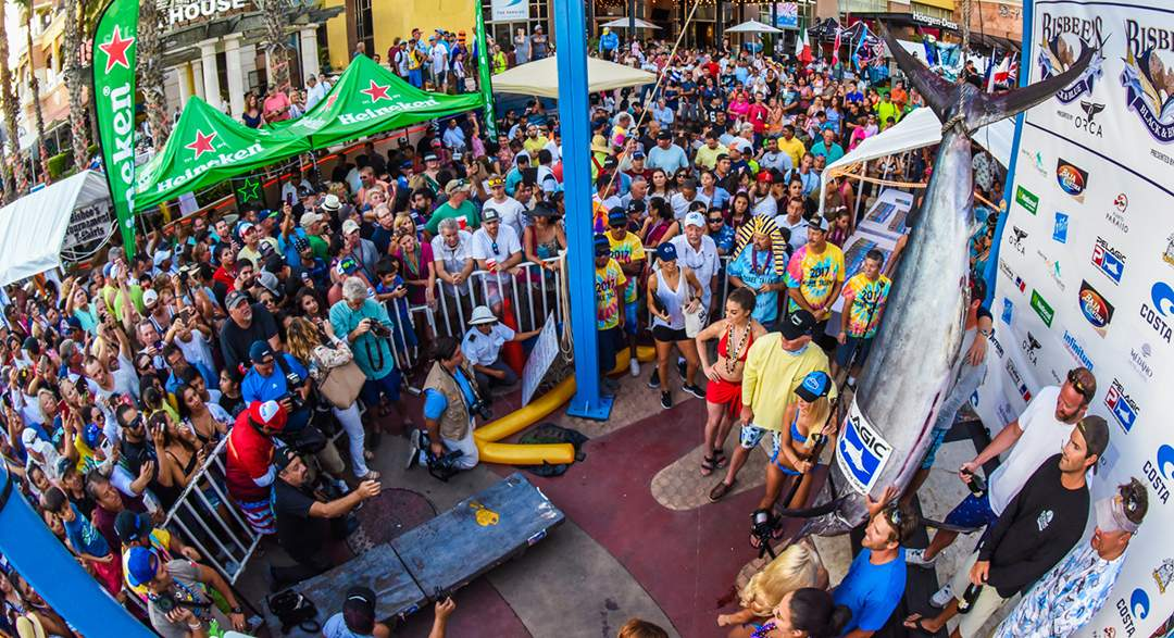 PELAGIC_Bisbees_Large Crowds__Weigh Station_Cabo 2017