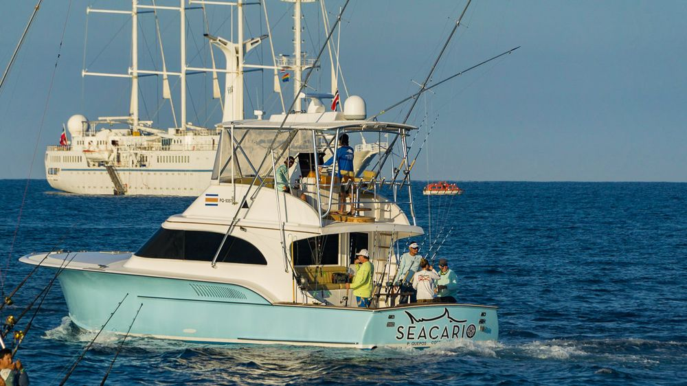 2019 Pelagic Rockstar Offshore Tournament Boats -31
