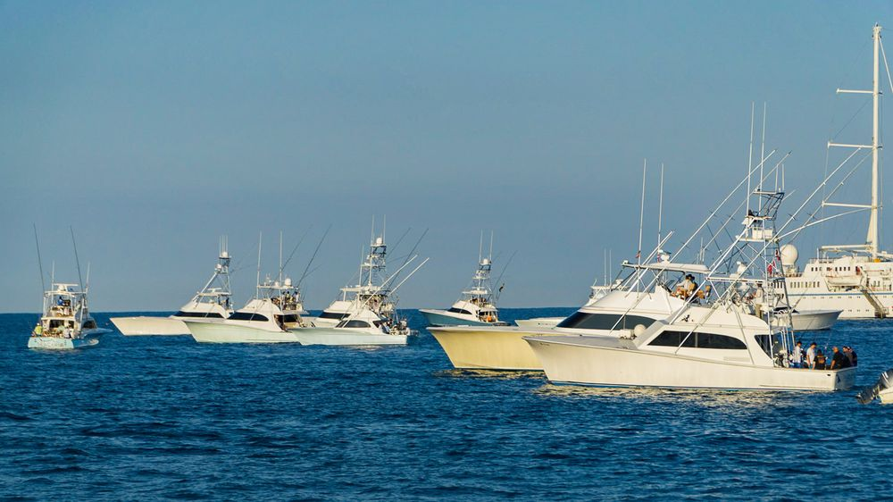 2019 Pelagic Rockstar Offshore Tournament Boats -39