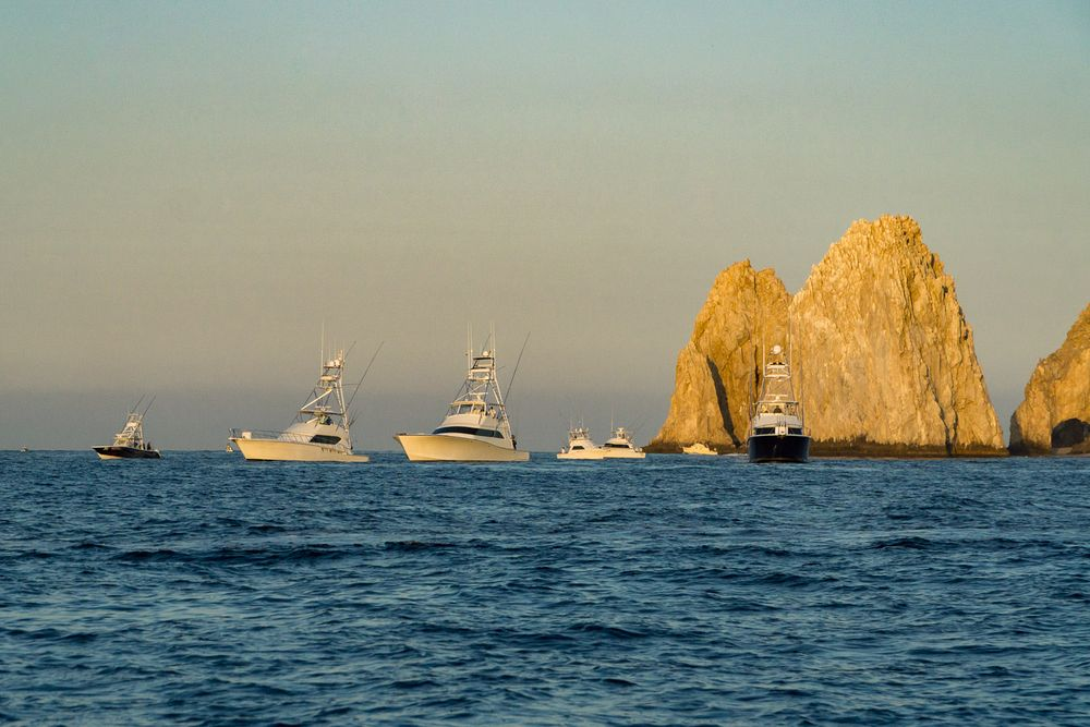 2019 Pelagic Triple Crown Cabo Gallery 35