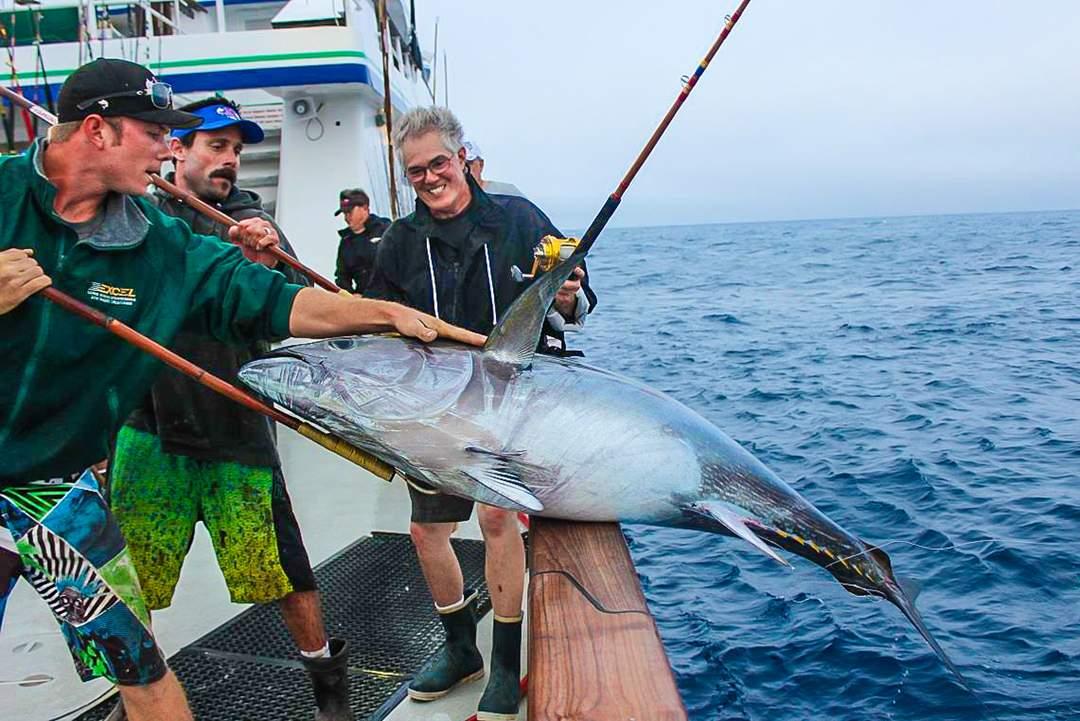 Bluefin Tuna_PELAGIC_Excel Sportfishing