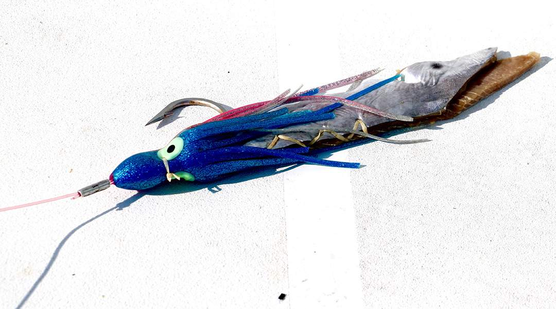 Sword bait